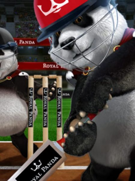 How to Sign Up and Play Cricket Betting in Royal Panda